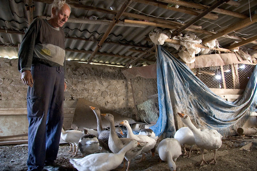 Marlen Shakhnazaryan lived in Stepanakert during the war, but was forced to leave when a bomb fell on his house in 1994, injuring his daughter and granddaughter.  A history teacher for 57 years, he now scrapes by living on a small farm in Khojali.