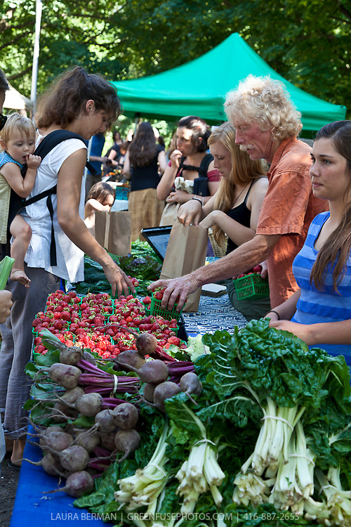Thorpe's Organic Produce at the Dufferin Grove organic farmers' market.