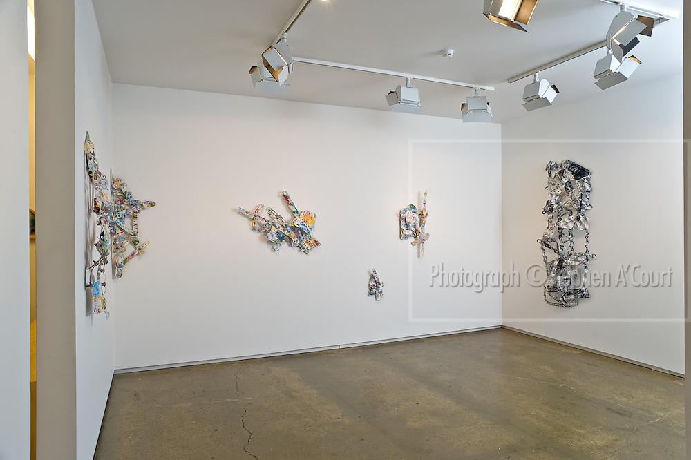 The work of Bowen Galleries' represented artist Jeff Thomson.