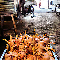 Whole Raw Chickens in Cart with Flies at Street Market in Mumbai, India<br /> A U.S. health inspector and consumers would cringe at the sight of these whole raw chickens in a dirty cart covered with flies at a street market in Mumbai, India.  However, this lack of food sanitation did not seem to bother the locals who just shooed away the flies before buying a bird.