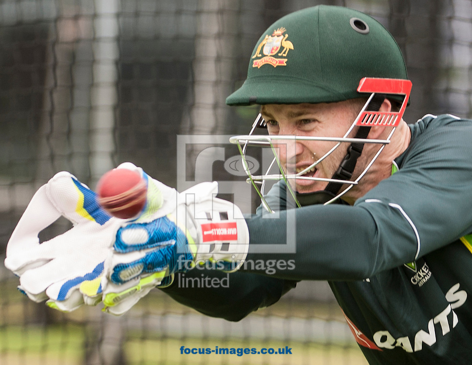 Peter Nevill during the Australia Cricket Practice at Lord's, London.<br /> Picture by Jack Megaw/Focus Images Ltd +44 7481 764811<br /> 15/07/2015