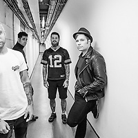 Fall Out Boy, Wembley Arena, October 2015