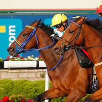 Glennten and S De Sousa winning the 7.20 race