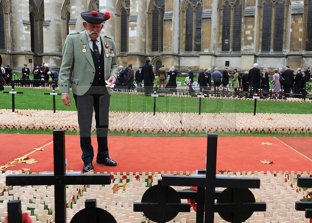 © Licensed to London News Pictures. 10/11/2011. Joe Hubble from Black Watch looks for his father regiment. London, UK. HRH The duke of Edinburgh opens the annual Field of Remembrance at Westminster Abbey today 10 November. . Photo credit : Stephen Simpson/LNP