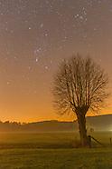 131111 Wielder by Night