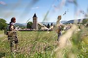 Stage initiation cueillette plantes sauvages avec Agnès Godard au Poizat sur le plateau du Retord, Ain