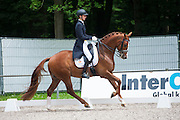 Robin Bernoski - Zorro<br /> CHIO Rotterdam 2013<br /> © DigiShots