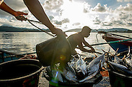 The fishing industry took years to bounce back after the tsunami hit Banda Aceh and the neighboring island, Pulah Weh. Fisherman unload their catch in the port of Sabang on the furthest western island in Indonesia on November 29, 2014 in Sabang, Pulah Weh, Indonesia. Ann Hermes/© The Christian Science Monitor 2014