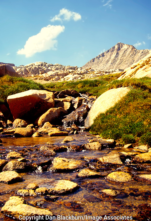Upper Pine Creek Flows Through a High Country Meadow in the High Sierra Nevada Mountain Range and John Muir Wilderness in California.