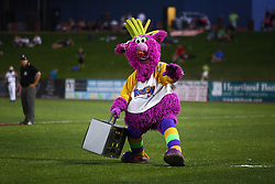 11 July 2012:  Reggy the Purple Party Dude hams it up with the home plate umpire who ends up covering the Dude with silly string during the Frontier League All Star Baseball game at Corn Crib Stadium on the campus of Heartland Community College in Normal Illinois