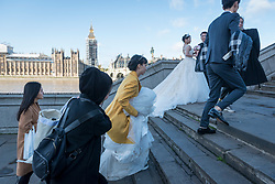 © Licensed to London News Pictures. 05/11/2017. London, UK.  A pair of mainland Chinese couples prepare for pre-wedding photographs to be taken on Westminster Bridge.  With Sterling's decline, London is seen as an ever more affordable location for such photographs, as well as providing memorable landmarks as backdrops.  Frequently, the photographer and team are also flown out from China to capture the images.  Photo credit: Stephen Chung/LNP