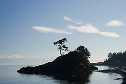North America, United States, Washington, San Juan Islands,person on island with binoculars