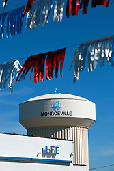 06 February 2015. Monroeville, Alabama.<br /> On the trail of Harper Lee's 'To Kill a Mocking Bird.'<br /> The Lee Motor Co, (no relations to Harper Lee) auto dealership with a large mocking bird mural on the wall. <br /> Photo; Charlie Varley/varleypix.com