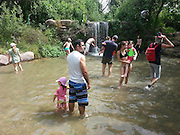 Israel, Upper Galilee, Hazbani River (AKA Snir River) a tributary of the Jordan river. Holiday makers wade in the water