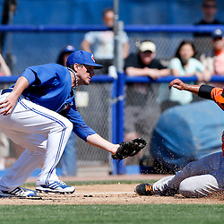 Mar 5, 2013; Dunedin, FL, USA; Toronto Blue Jays third baseman Andy LaRoche (70) tags out Baltimore Orioles base runner Luis Exposito during the top of the third inning of a spring training game at Florida Auto Exchange Park. Mandatory Credit: Derick E. Hingle-USA TODAY Sports