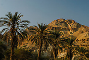 Dead Sea. Ein Gedi Natural Reserve. The Ein Gedi oasis ha a long history. David fled here to escape king Saul as, later, Simon Bar Kokhba, leader of the second Jewish revolt (132--135 A.D.) against Roman empire.