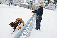 Laurie Deus, an animal control officer for the City of Coeur d'Alene, checks on the safety of two dogs who were left outside while the owner was away Friday. The owner provided the dogs with appropriate shelter for the winter conditions.