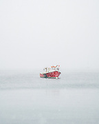 A beautiful red lobster boat is moored in Rockland Harbor in a blinding snowstorm.