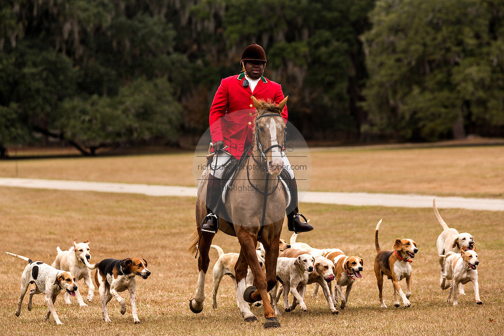 Huntsman Jamie Green leads the hounds in the first hunt of the season at Middleton Place Plantation December 1, 2013 in Charleston, SC.