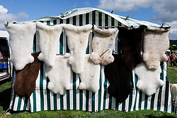 © Licensed to London News Pictures.26/08/15<br /> Egton, UK. <br /> <br /> Sheep skins are hung from a tent at the 126th Egton Show in North Yorkshire. <br /> <br /> Egton is one of the largest village shows in the country and is run by a band of voluntary helpers. <br /> <br /> This year the event featured wrought iron and farrier displays, a farmers market, plus horse, cattle, sheep, goat, ferret, fur and feather classes. There was also bee keeping, produce and handicrafts on display.<br /> <br /> Photo credit : Ian Forsyth/LNP