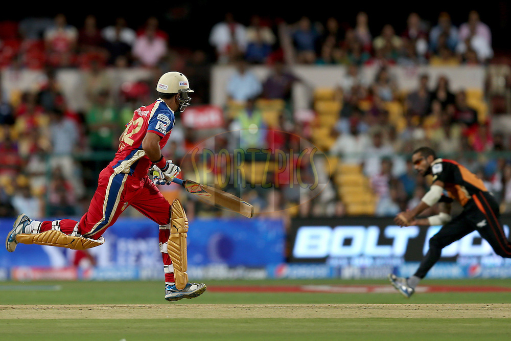 Yuvraj Singh running between the wickets during match 24 of the Pepsi Indian Premier League Season 2014 between the Royal Challengers Bangalore and the Sunrisers Hyderabad held at the M. Chinnaswamy Stadium, Bangalore, India on the 4th May 2014. Photo by Jacques Rossouw / IPL / SPORTZPICS<br /> <br /> <br /> <br /> Image use subject to terms and conditions which can be found here:  http://sportzpics.photoshelter.com/gallery/Pepsi-IPL-Image-terms-and-conditions/G00004VW1IVJ.gB0/C0000TScjhBM6ikg