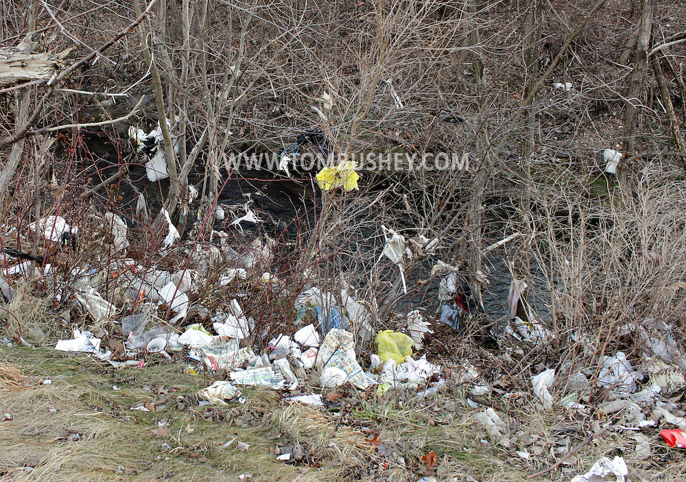 Middletown, New York - Plastic shopping bags and other garbage litter the ground behind a shopping plaza on Jan. 18, 2012.