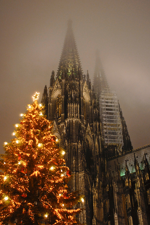 DEU,Deutschland,Nordrhein-Westfalen,Köln,  Weihnachtsbaum an Heilig Abend  vor dem Kölner Dom   | DEU, Germany, North Rhine-Westphalia, Koeln,Cologne  Christmas tree in front of the Cologne Cathedral  on Christmas Eve|