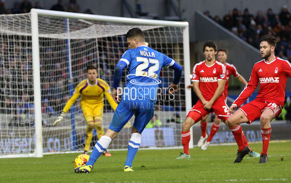Brighton's Danny Holla shoots at goal during the Sky Bet Championship match between Brighton and Hove Albion and Nottingham Forest at the American Express Community Stadium, Brighton and Hove, England on 7 February 2015. Photo by Phil Duncan.