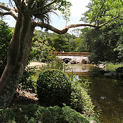 Morikami Park in Delray Beach, Palm Beach County, Florida, is named for George Morikami, a Japanese immigrant to Florida. Morikami donated the land to the county and now is the site of the Morikami Museum and Japanese Gardens. A stroll through gardens will take you to typical Japanese gardens and rock gardens.<br /> Photography by Jose More