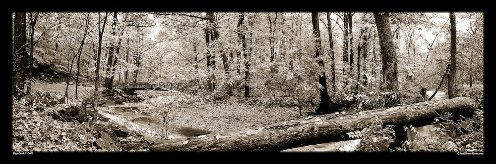 Panoramic Photograph of Sligo Creek Park, Takoma Park, MD.  Print Size (in inches): 15x5; 24x8; 36x12; 48x15; 60x19; 72x24