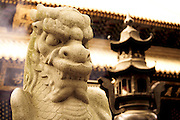 Temple gaurdian of Mt.Putuo