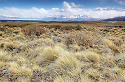 Grass lands in the foreground  with mountains in the background Patagonia,  Argentina.