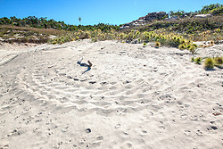 Turtle tracks on Wailgwin Island in Camden Sound.
