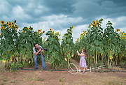 A father and daughter have fun taking pictures of each other in a sunflower field at Burnside Farms, Prince William County, Ireland.