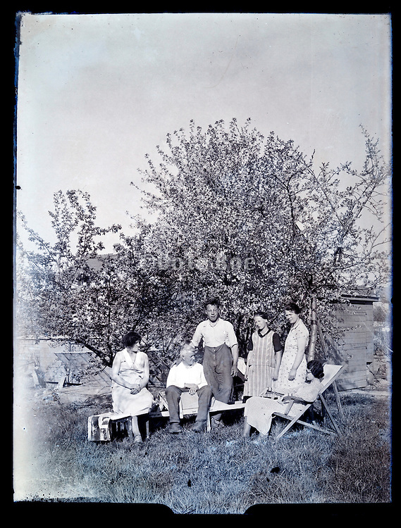 rural family photo in the backyard by the fruit tree