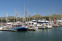 Pleasure boats and fishing boats moored in Bodega bay Marina, California