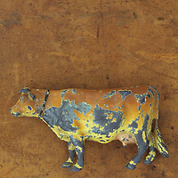 Scratched lead model of standing brown and golden cow lying on scuffed leather