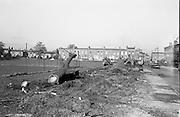 6/11/1967<br /> 11/6/1967<br /> 6 November 1967<br /> <br /> Herd of Deer in Phoenix Park  Road widening at Belgrove square in Rathmines