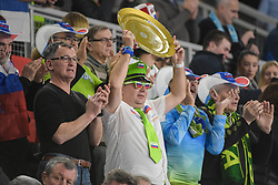 Fan of Slovenia during handball match between National teams of Slovenia and Spain on Day 6 in Main Round of Men's EHF EURO 2018, on January 23, 2018 in Arena Varazdin, Varazdin, Croatia. Photo by Mario Horvat / Sportida