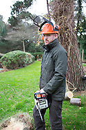 Young Men, Saw, Tree Trunk, Safety Equipment, Headwear,