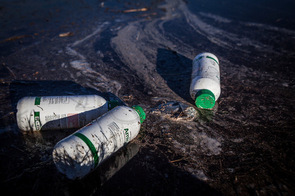 2015/03/03 – Monte Maiz, Argentina: Pesticide containers float on contaminated water between a soy field and the road in Monte Maiz. There isn't any plan to collect or to storage used agro-chemical containers, so they are just sent to the landfill and mixed with normal garbage or chucked away. Many of them still contain residues of the pesticides, which will contaminate the environment, the water of the region and anyone that will enter in contact with it without protection. (Eduardo Leal)