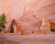 0100-1004C ~ Copyright: George H. H. Huey ~ Antelope House. Anasazi culture dwelling, occupied ca. A.D. 1000's-1200's. Canyon del Muerto. Canyon de Chelly National Monument, Arizona.