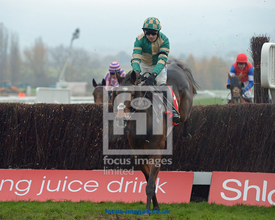 A preview of this weekend's favourites in UK Racing.<br /> Picture by Martin Lynch/Focus Images Ltd 07501333150<br /> 09/12/2016<br /> <br /> Original caption:<br /> MODULE at Cheltenham 16-11-16.