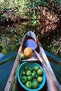 Outrigger Canoe, Kosrae, FSM, Micronesia