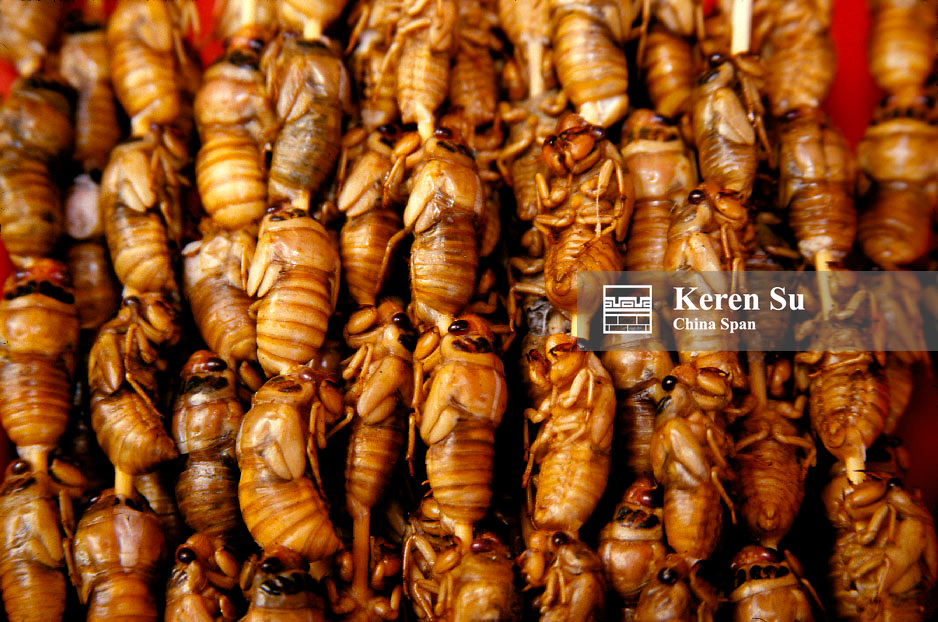 Snack food, cicadas on a stick, China