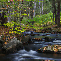 During this year&rsquo;s New England fall photography tours I encountered many beautiful scenes including this view of Stony Brook along NH-31. The winding brook immediately spoke to me and I instantly made a u-turn to explore the area. Glad I did, because after jumping across some rocks and boulders I was able to frame this image of the river and its calming environment. <br />