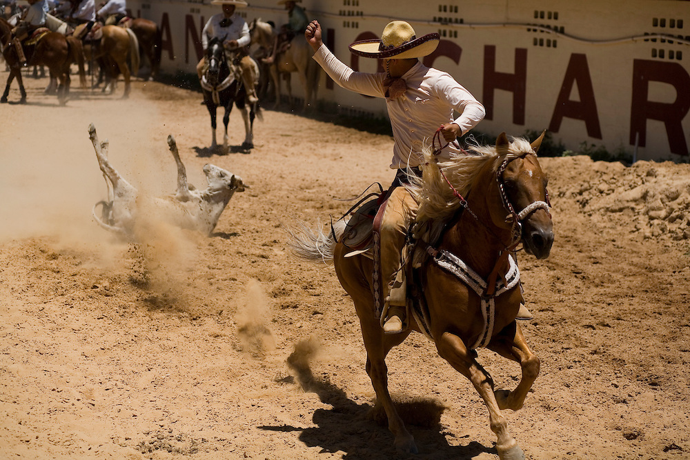 Julia Robinson photo.Sergio Gallindo celebrates a successful run during the coleadero at a charreada in San Antonio.