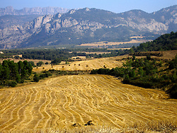 SPAIN CATALUNYA PYRENEES SEP07 - Agricultural fields near Abella de la Conca, Pyrenees mountains, Spain...jre/Photo by Jiri Rezac..© Jiri Rezac 2007..Contact: +44 (0) 7050 110 417.Mobile:  +44 (0) 7801 337 683.Office:  +44 (0) 20 8968 9635..Email:   jiri@jirirezac.com.Web:    www.jirirezac.com..© All images Jiri Rezac 2007 - All rights reserved.