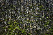 Dolerite cliffs of Du Cane Range in Cradle Mountain–Lake St Clair National Park, Tasmania