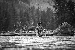 Fly fishing for trout on the Madison river